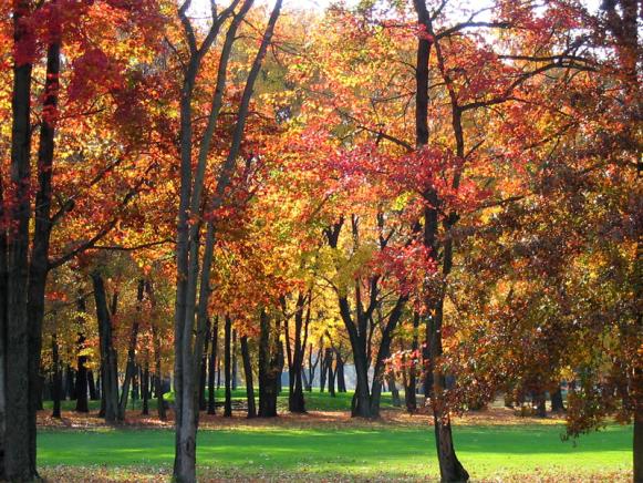 Princeton - Golf Course